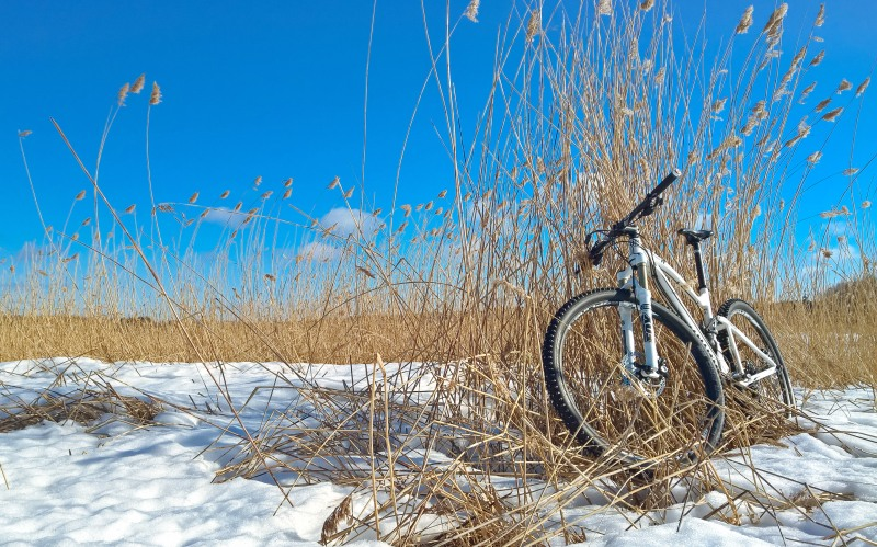 Biking on frozen snow
