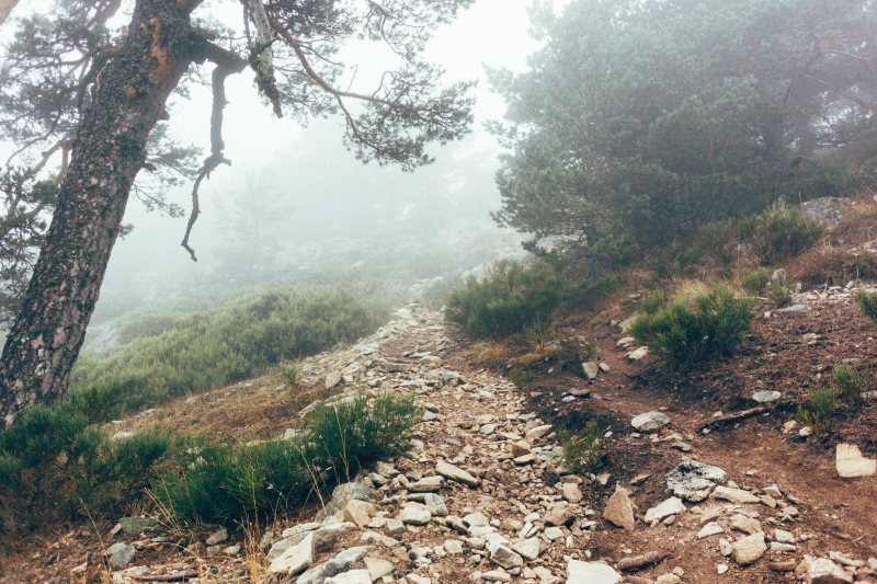 Climbing the trails from Cercedilla