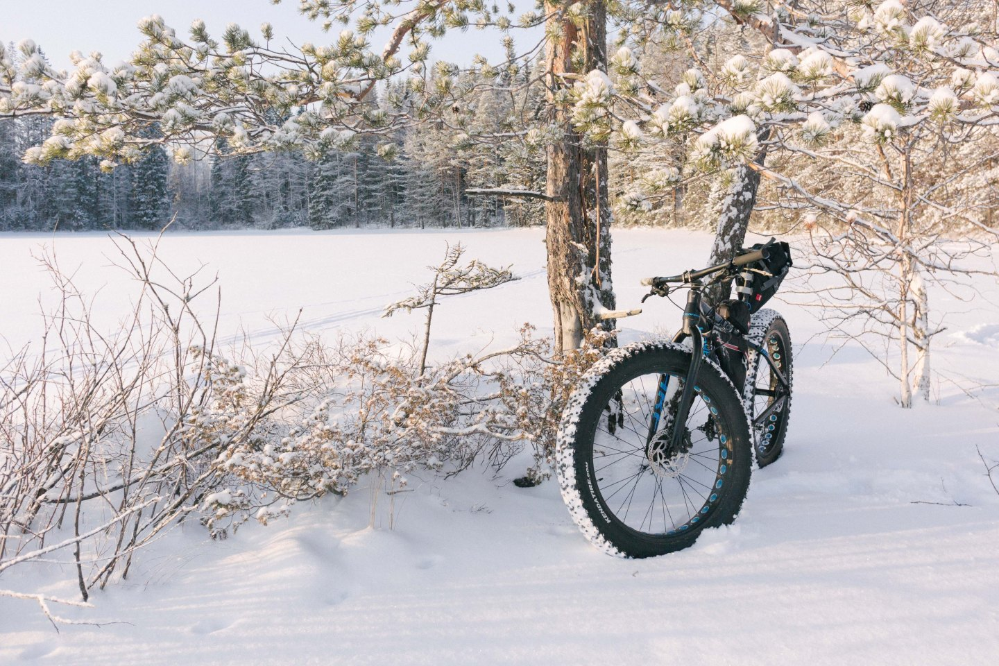 Biking in arctic winter