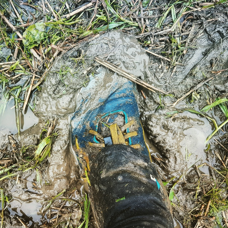 Muddy going in Lappee Jukola 2016