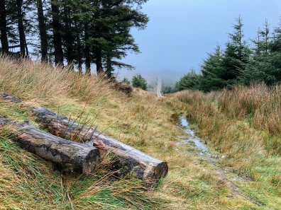 The Wicklow Way Trail Running