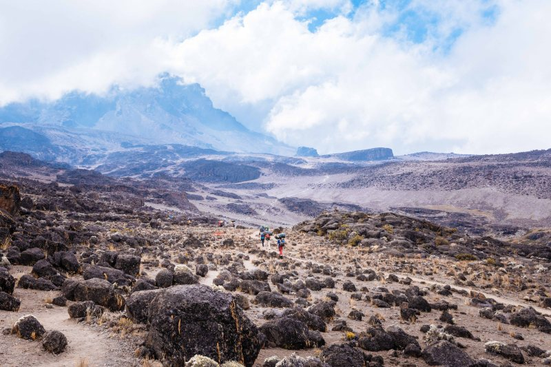 Heading towards Lava Tower, Kilimanjaro