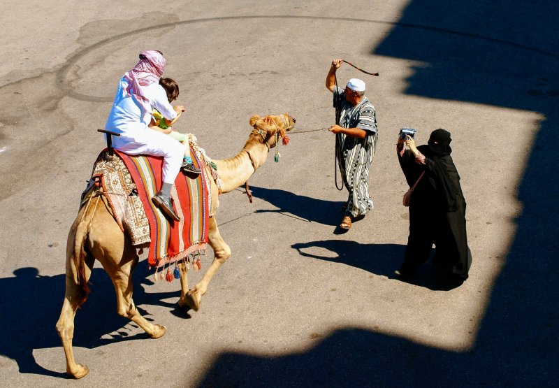 Camel riding, Syria